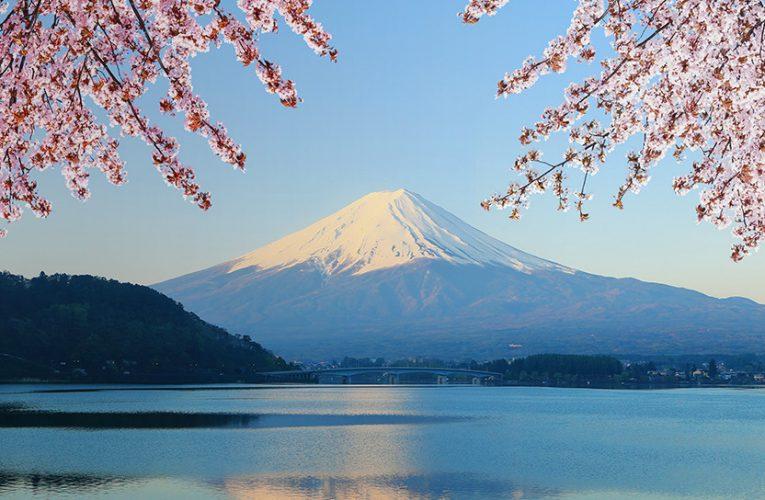 [新聞] 移民日本